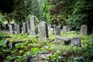 Dangers of Assumptions in rural cemetary